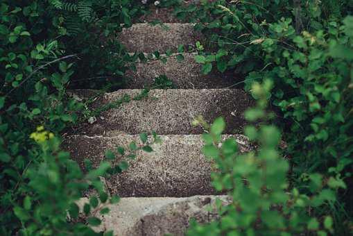 nawierzchnie ekologiczne z betonu